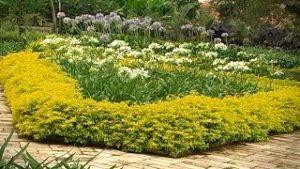 Mantenimiento-de-Jardines-y-Zonas-Verdes-Residenciales-TvAgro-por-Juan-Gonzalo-Angel