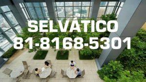 SELVATICO-Servicios-de-disenocreacion-y-mantenimiento-de-areas-verdes